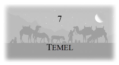 7. Temel