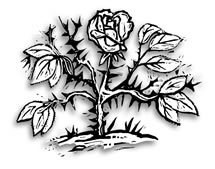 Chapter 14. Flower